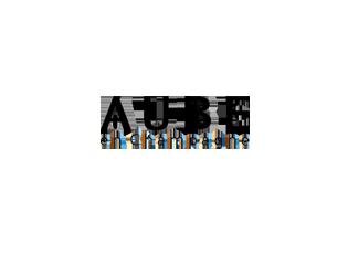 Logo Aube en Champagne