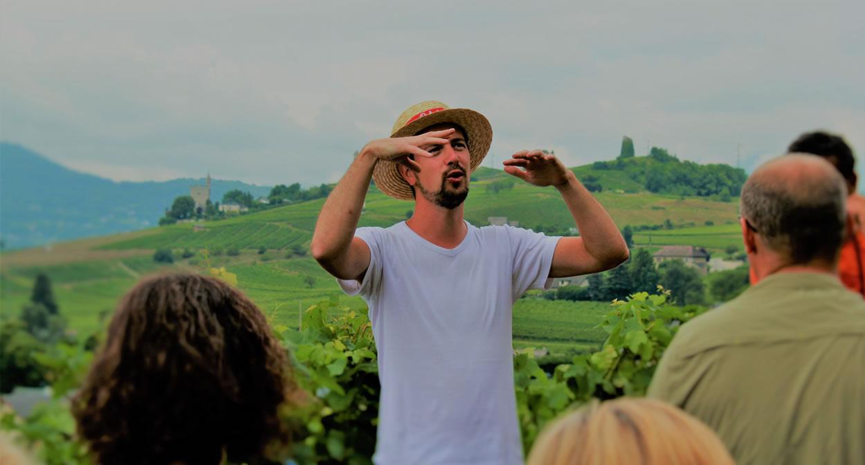Balade gourmande dans les vignes cœur de Savoie © J. Hugot