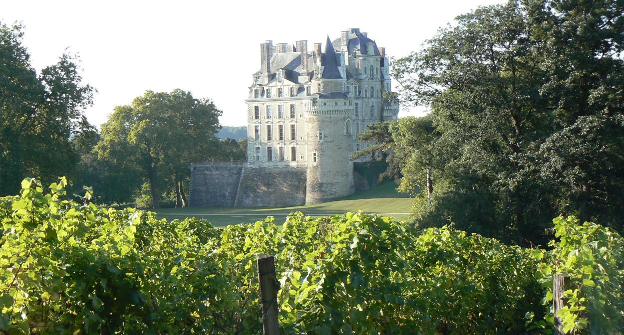 Chateau de Brissac © Christian Vital