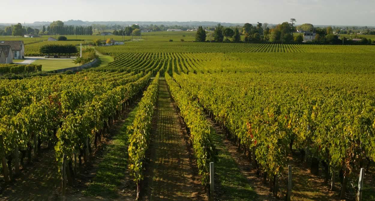 Saint-Émilion et ses vignobles © Relais & Châteaux