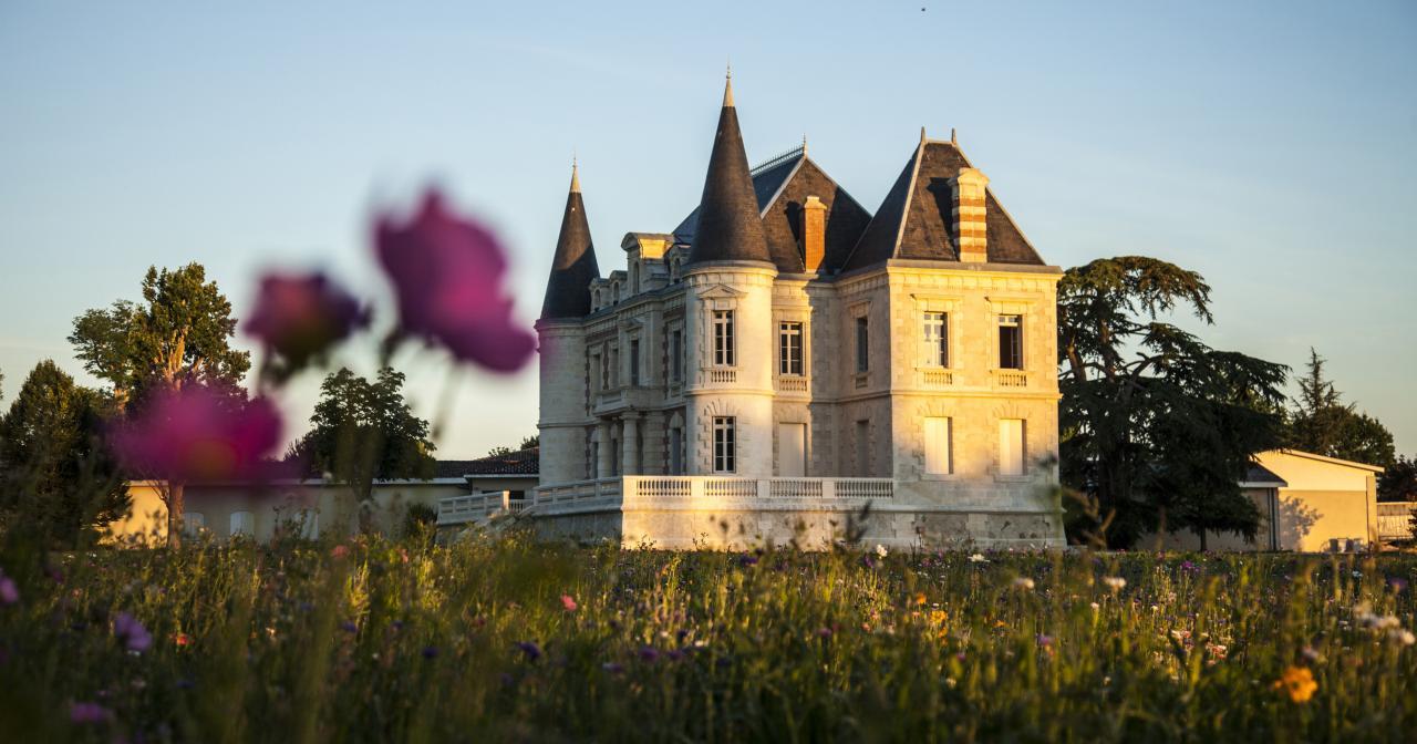 Château Lamothe Bergeron, vignoble de Bordeaux ©Andy Julia