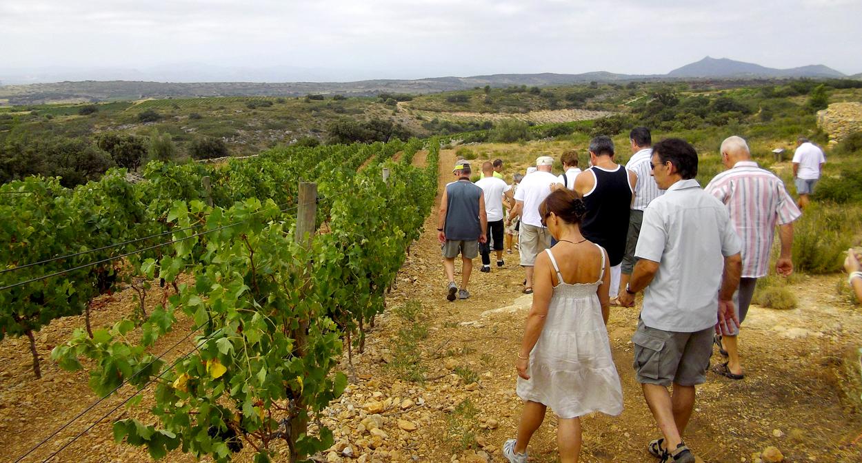 Vignoble du Crest Petit