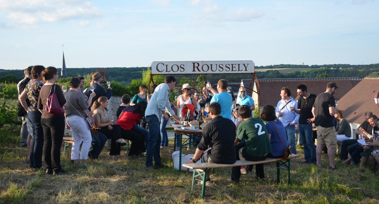 Domaine du Clos Roussely, Loire Valley vineyard