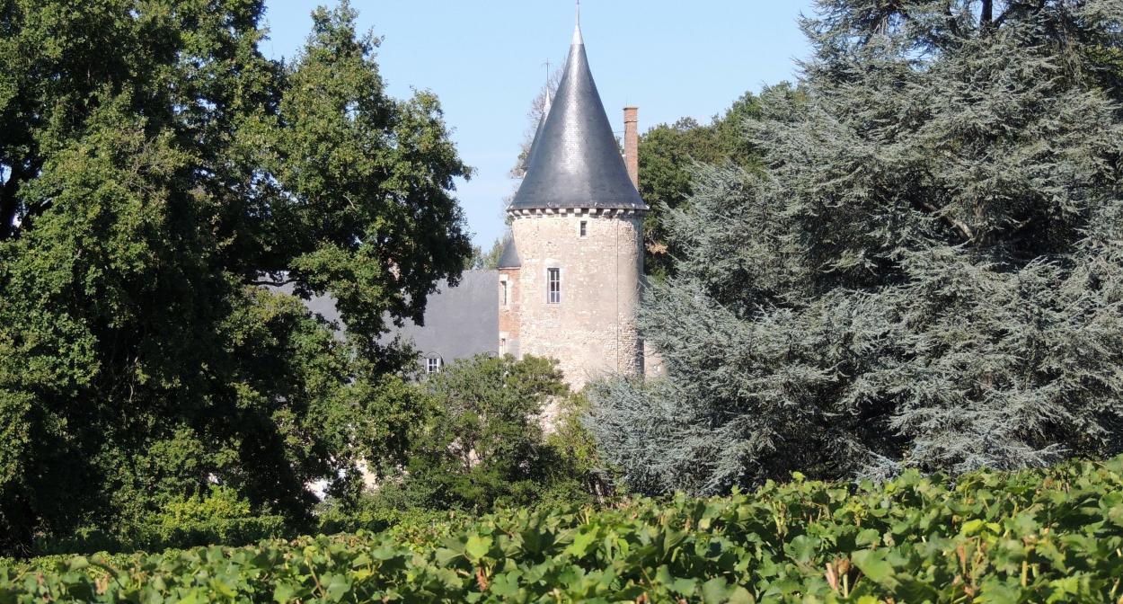 Vue sur le Château de Tracy © sarl Château de Tracy
