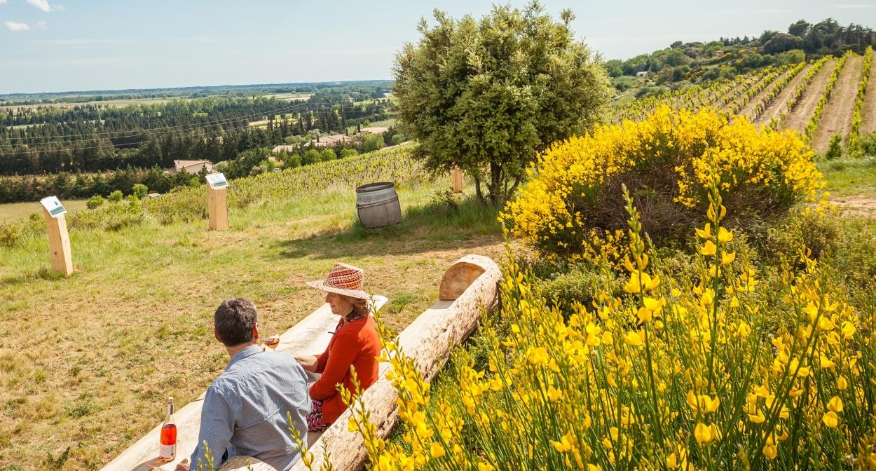 Belvédère sur le sentier d'interprétation au Château Mourgues du Grès ©Château Mourgues du Grès