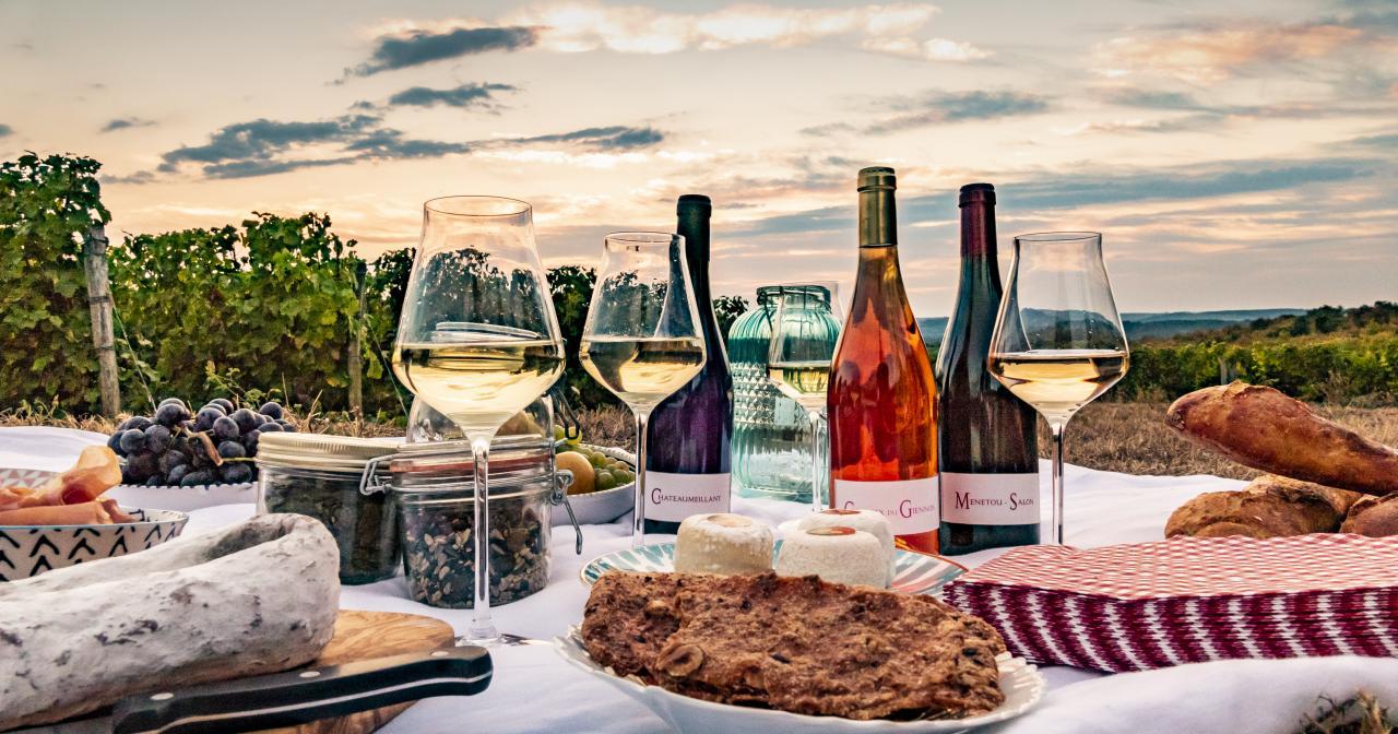 Wine tourism in the Loire Valley vineyard ©Pierre Merat