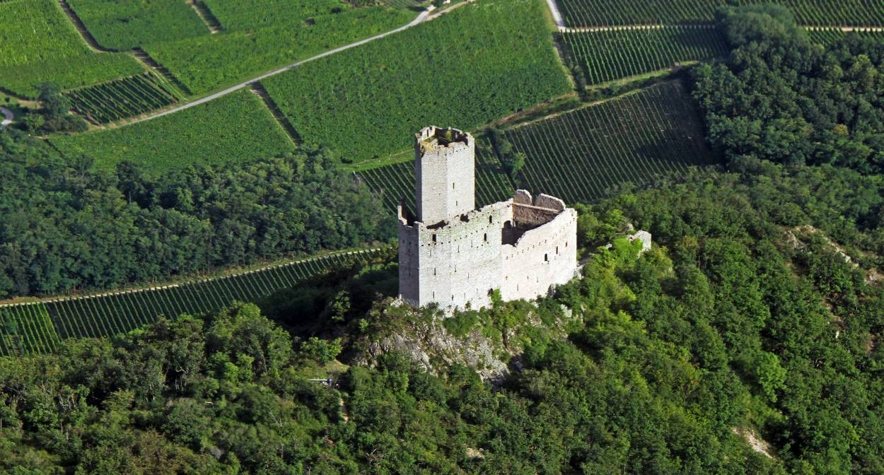 Le château d'Ortenbourg @ VUANO-ConseilVinsAlsace