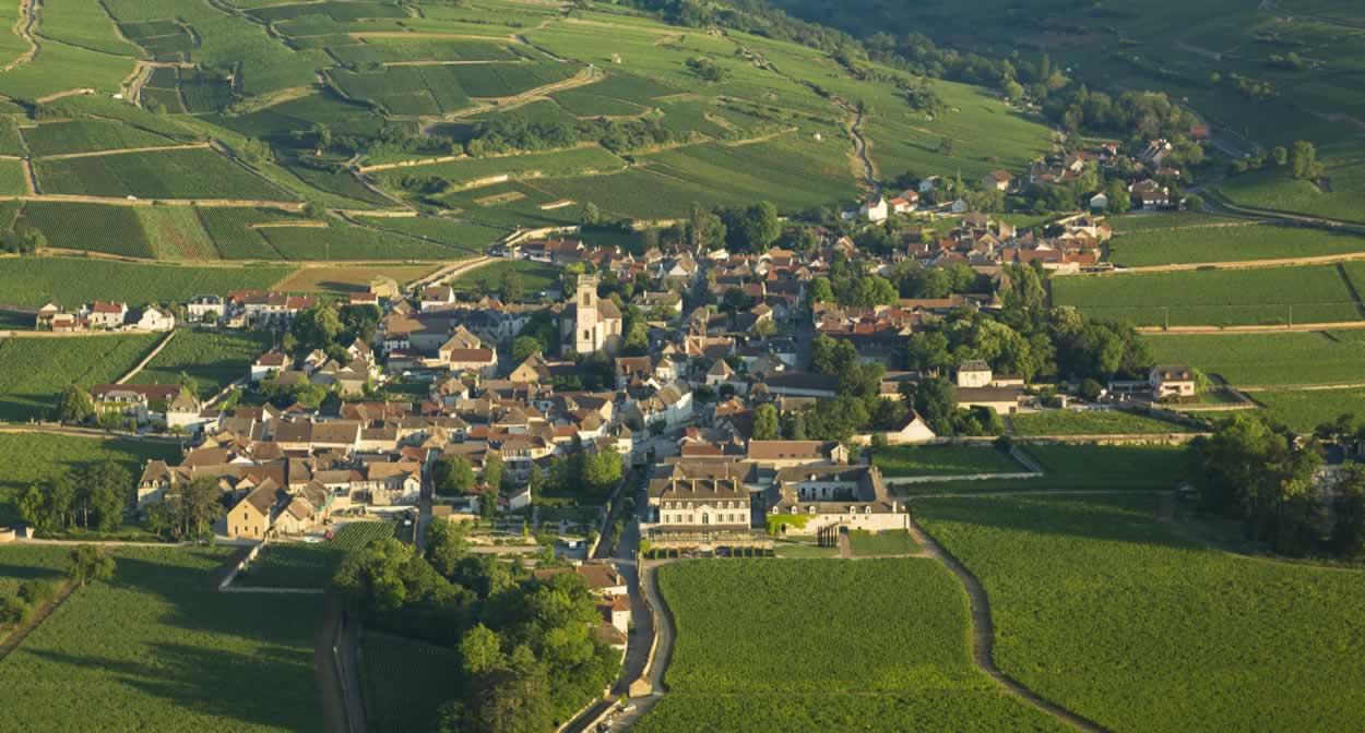 Château over Burgundy vines © Château de Pommard