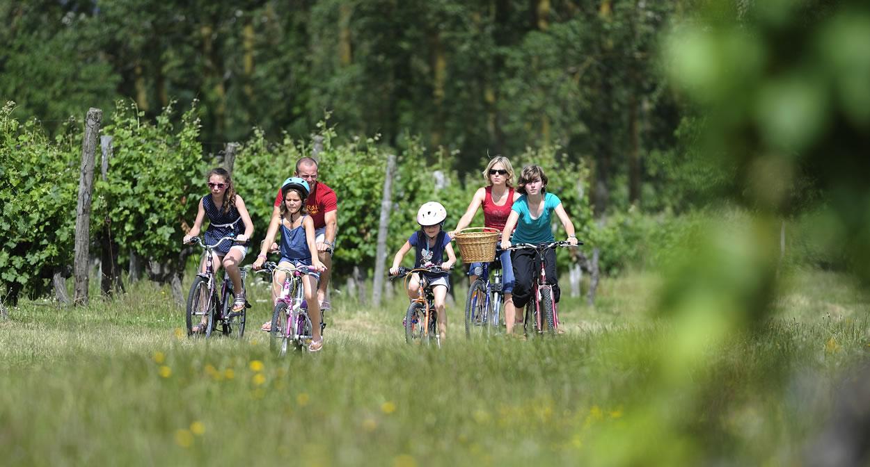 Cycling through the vines near Brissac ©Jean-Sébastien Evrard
