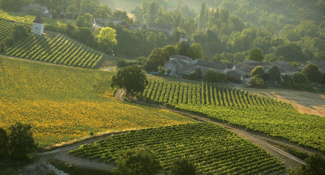 Vignobles du Sud Ouest, France ©CRT Midi Pyrénées D.Viet