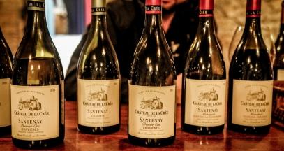 Les vins de Bourgogne ©Leah Walker