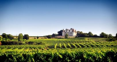 Château de Monbazillac, Vignoble de Bergerac ©IVBD