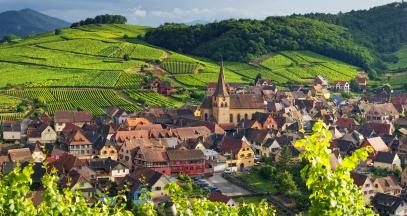Niedermorschwihr vineyard of Alsace ©Zvardon Conseil Vins Alsace