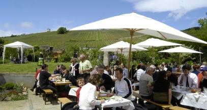 Pique-nique vigneron Alsace ©Synvira