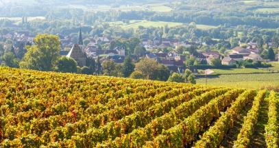 Santenay wine route of Bourgogne ©Alain Doire Bourgogne tourisme