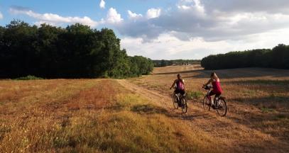 Découverte de la destination Sancerre, Pouilly et Giennois à vélo ©Office de Tourisme Loire Vignobles et Nohain
