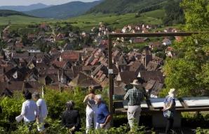 Walking along the wine paths on the Route des Vins d'Alsace © MEYER-ConseilVinsAlsace