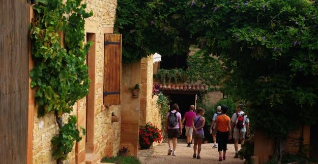 Food-lovers' walks in Beaujolais with Cadoles et Sens © N. Leroux