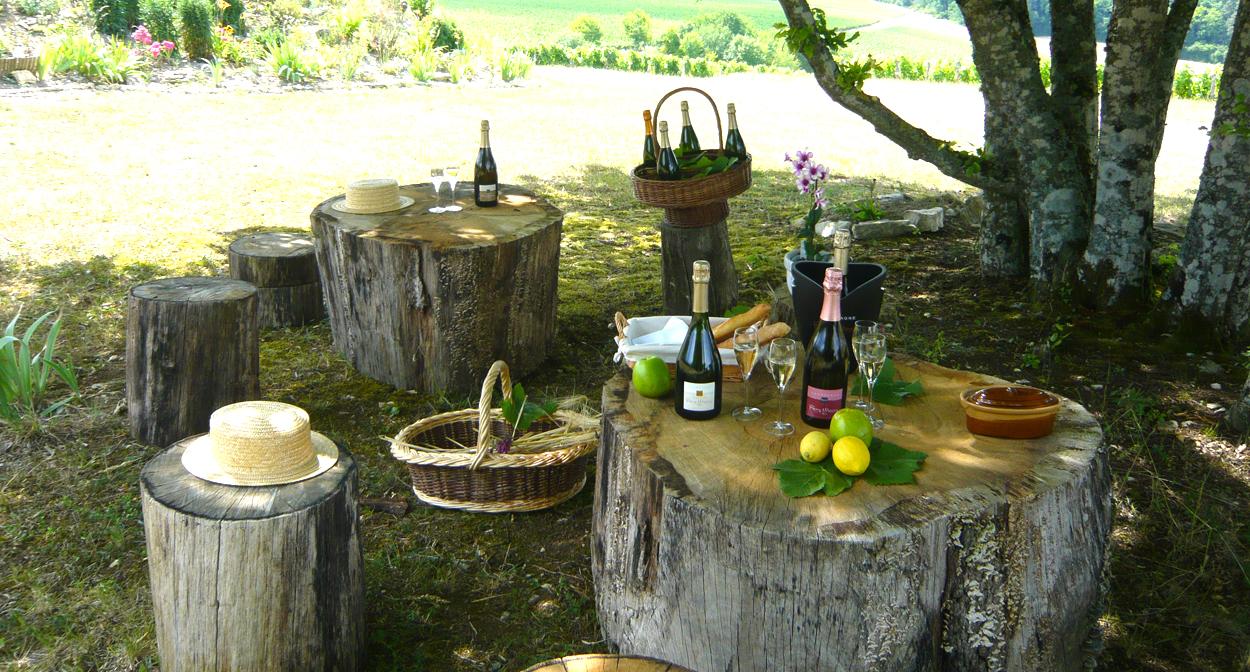 Atelier dégustation Champagne Rémy Massin