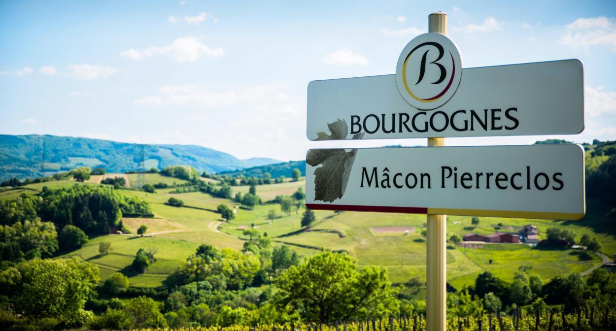 Mâcon, South Burgundy ©Emilie Fevre