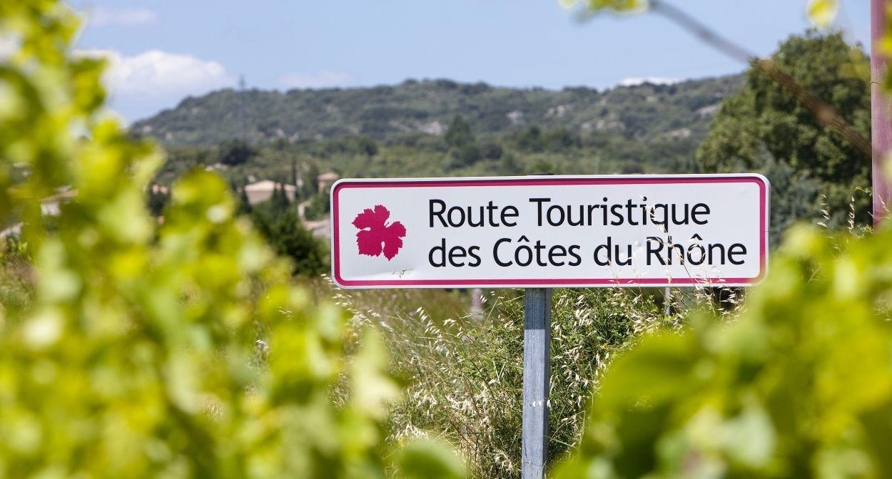 Follow Jeanine as she visits the rhone valley vineyard ©Inter rhône