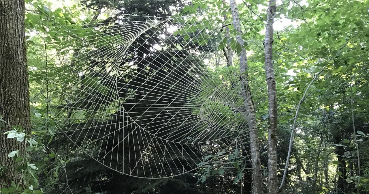 Vortex Toile d'araignée - Durante Segond ©Smith Haut Lafitte