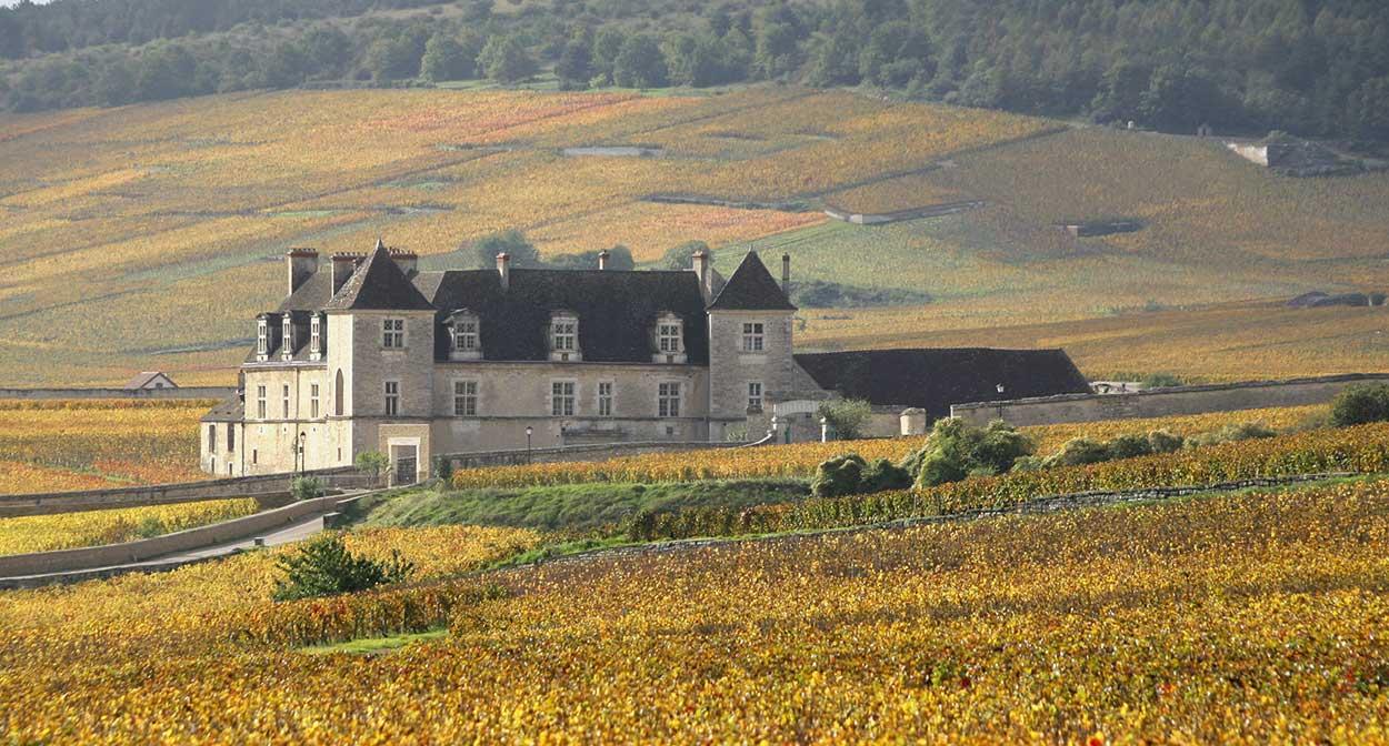 Clos de Vougeot Chateau in Burgundy